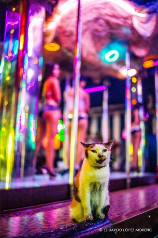 Bangkok 010